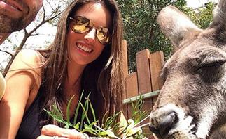 Victoria's Secret angel Alessandra Ambrosio visits Taronga Zoo!
