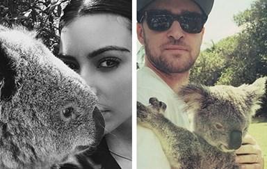 Celebs with Australian animals
