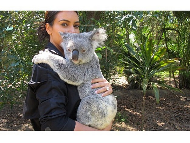 While visiting Australia Zoo in Queensland with husband Kanye West and their adorable daughter North on Monday, Kim Kardashian had a wild time getting up close and personal with some of Australia's favourite animals.