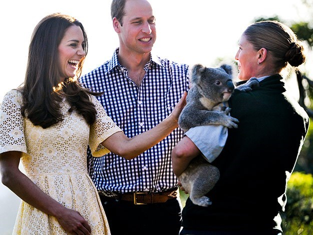 Duchess Catherine laughs as she pats a koala.