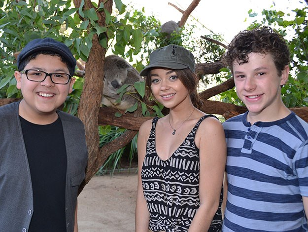 The Modern Family cast got up close and personal with some Aussie critters when they came down under earlier this year to film their special Australia episode. [READ MORE HERE](http://www.womansday.com.au/celebrity/news-in-pictures/2014/2/modern-family-cast-in-oz!/)