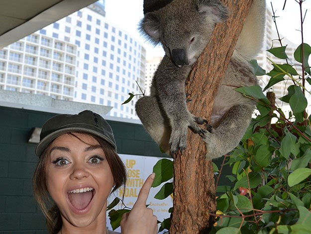 Modern Family cast member Sarah Hyland looked super excited to meet a koala for the first time!