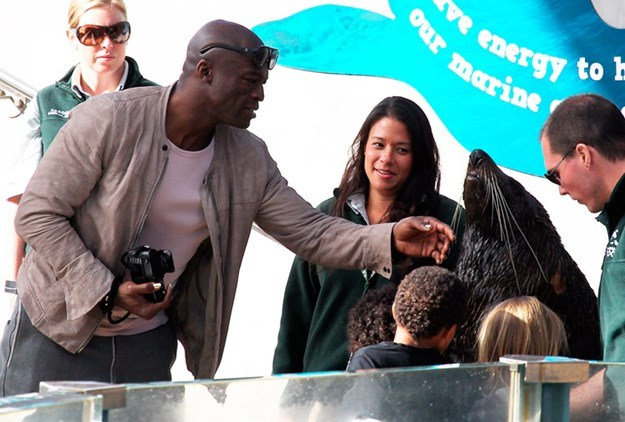 Then there was the time that Seal got to meet a seal! – Yup, again at Sydney's Taronga Zoo. [READ MORE HERE](http://www.womansday.com.au/celebrity/news-in-pictures/2012/6/seal-meets-a-seal/)