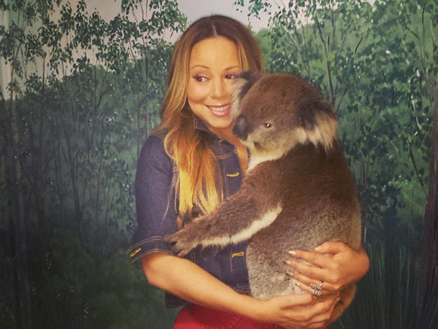 Mariah Carey got cuddly with a koala on her recent trip Down Under.