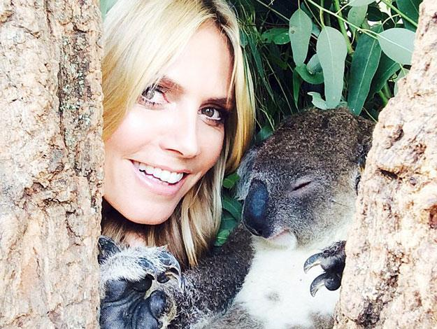 Heidi got up close and personal with some of the furry locals at Taronga Zoo - posting this adorable snap with a koala!