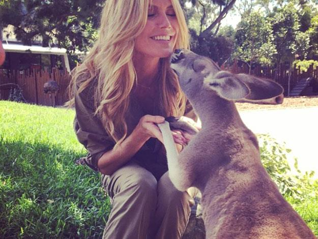 Kisses with a kangaroo!