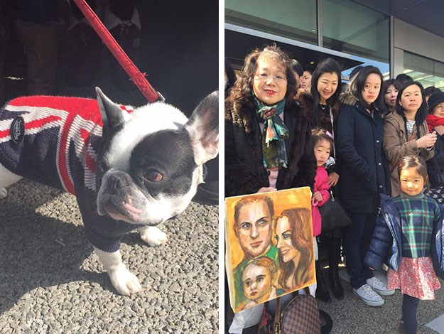 Japanese royal lovers gather to greet the Prince, brandishing gifts - and even dressing their pets in British-themed costumes just for the occasion!