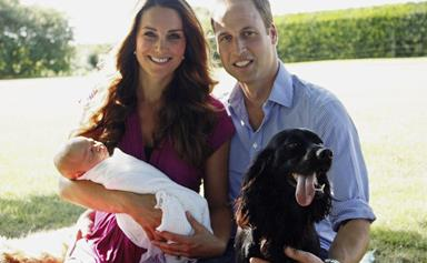 Royal pets: The posh pooches (and ponies and cats) that keep this regal family company