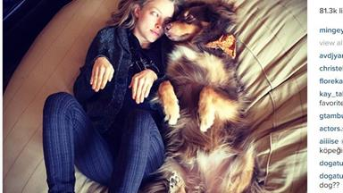 10 times Amanda Seyfried's dog was the cutest