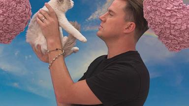 Channing Tatum has some major beef with a fluffy kitten