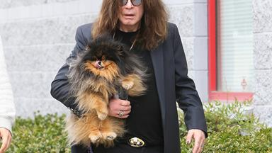 Ozzy Osbourne breaks his silence after divorce reports