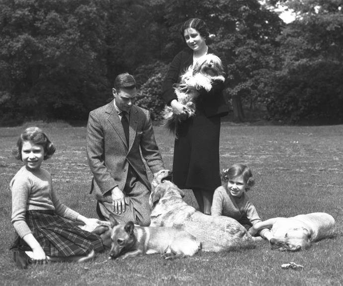 In this photo taken June 1936, King George VI and Queen Elizabeth pose for a family snapshot in the ground of Windsor Castle with the Princesses Elizabeth and Margaret and their four dogs.   Photo: Studio Lisa/Getty