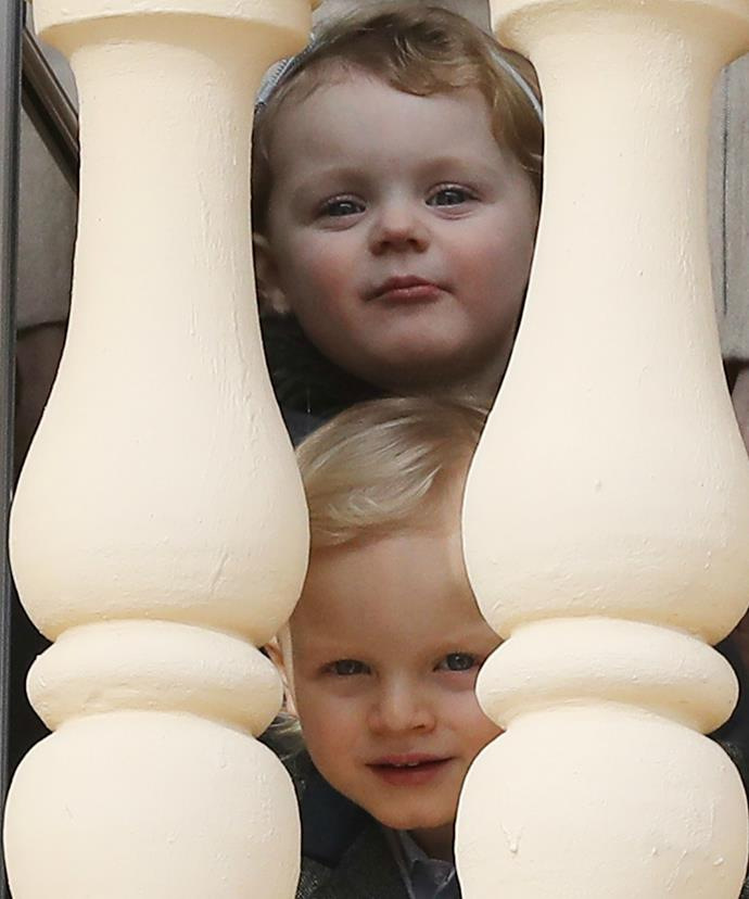 These little cherubs have won the world over with their cheeky antics.