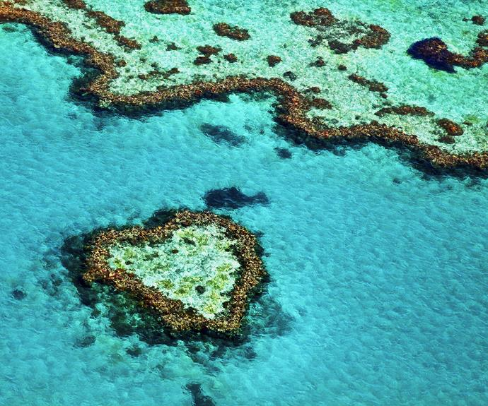 Heart Reef in the Great Barrier Reef, Queensland.