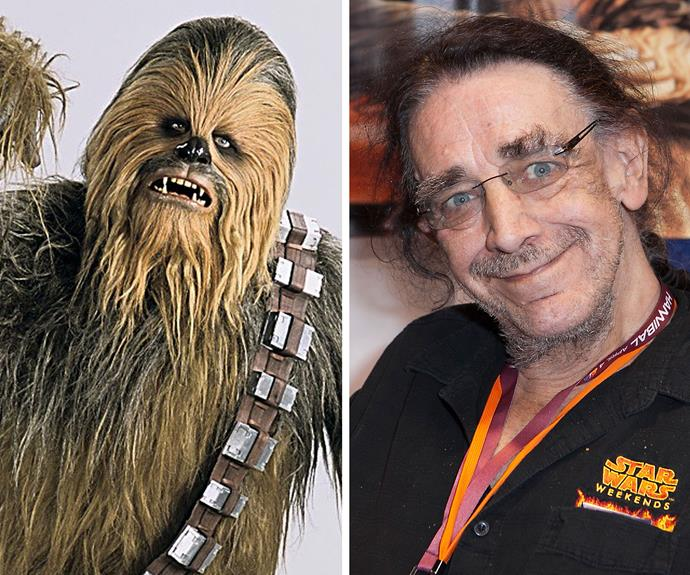 Peter Mayhew: Mayhew played everyone's favourite Star Wars character Chewbacca in four of the franchise's films. When he's not on the big screen, Mayhew scrapes a living appearing in commercials and doing promotional appearances dressed as Chewbacca. He will also appear in Star Wars: The Force Awakens.