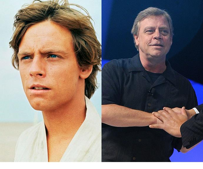Mark Hamil: The original Luke Skywalker didn't make many movies after Star Wars. After dabbling in stage acting, he found success as a voice actor, most notably voicing the character of The Joker in Batman animations and video games. Later this year he will reprise his most famous role, playing Mr Skywalker in Star Wars: The Force Awakens.
