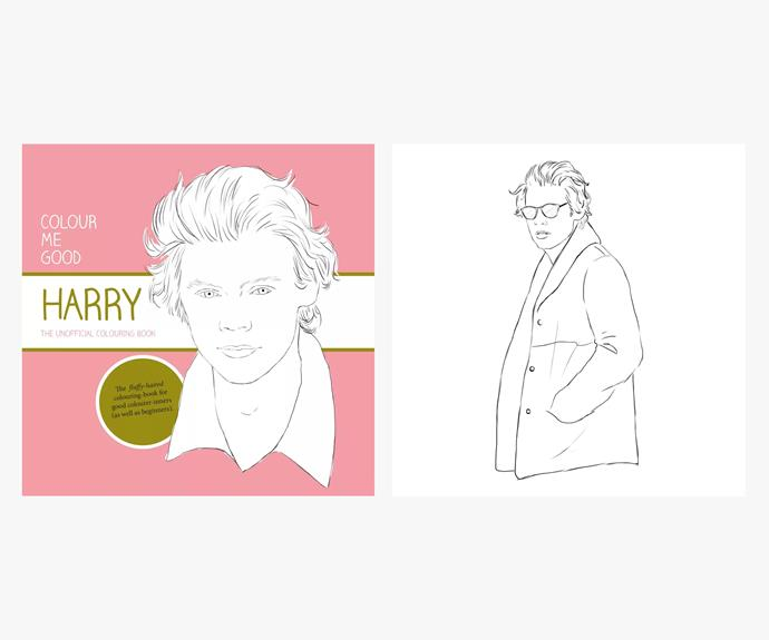 [Colour Me Good, Harry Styles by i Love MEL](http://shop.ilovemel.me/products/coloring-book-colour-me-good-harry).