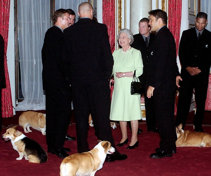 The Queen with a retinue of corgis meets the New Zealand All Blacks at Buckingham Palace, November 2002