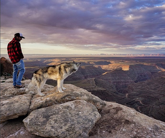 """Loki and his master checking out the view. **PHOTO CREDIT: [Instagram/loki_the_wolfdog](https://instagram.com/loki_the_wolfdog/ target=""""_blank"""")**"""