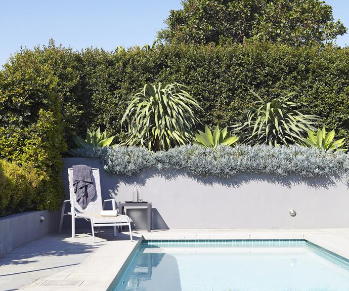 """First of all it's worth asking, [will a swimming pool add value to my home?](http://www.homestolove.com.au/does-a-swimming-pool-add-value-to-a-home-1558