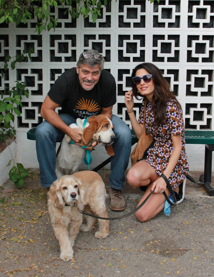 George and Amal with Millie (above) and Louie (below).