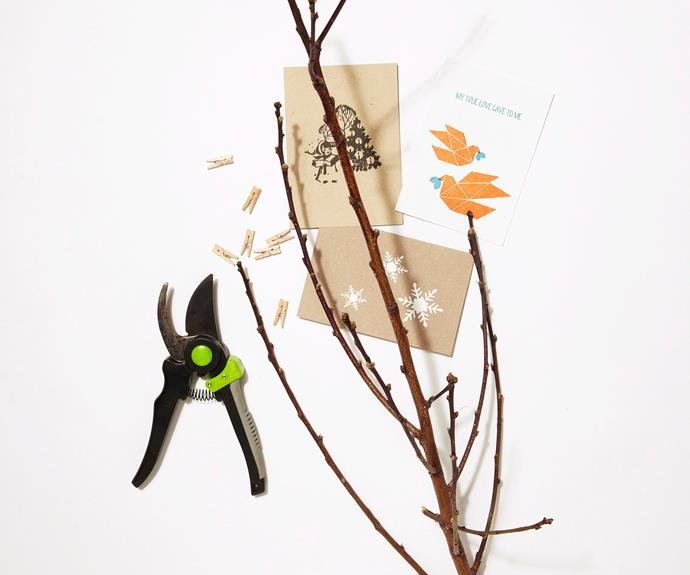Collect tree branches and place into a vase. Arrange neatly, so that cards can be clearly displayed across the tree.