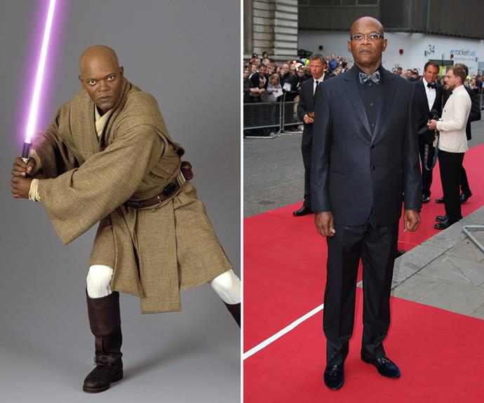Samuel L. Jackson played Mace Windu in the prequel films.