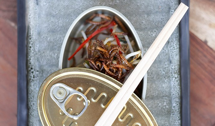 A staple on Public's menu for two years, the Can of Worms starter of chilli, deep-fried mealworms (which taste like crunchy Asian noodles) and bean sprouts has a spicy, salty flavour.