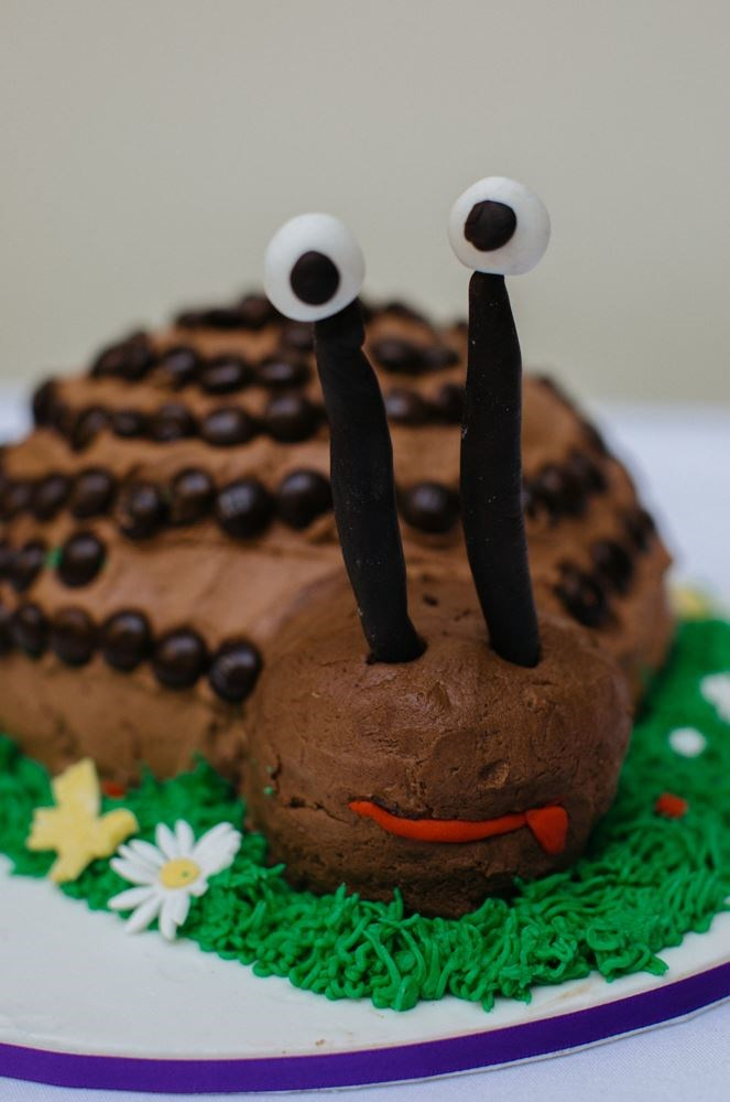 All hail this super-sweet snail, made with love - and plenty of chocolate - by Shellie Grieve.