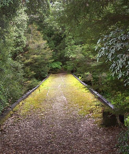 A railway bridge leading to East Pillinger. (Image: Joanne Powell / Wikimedia)