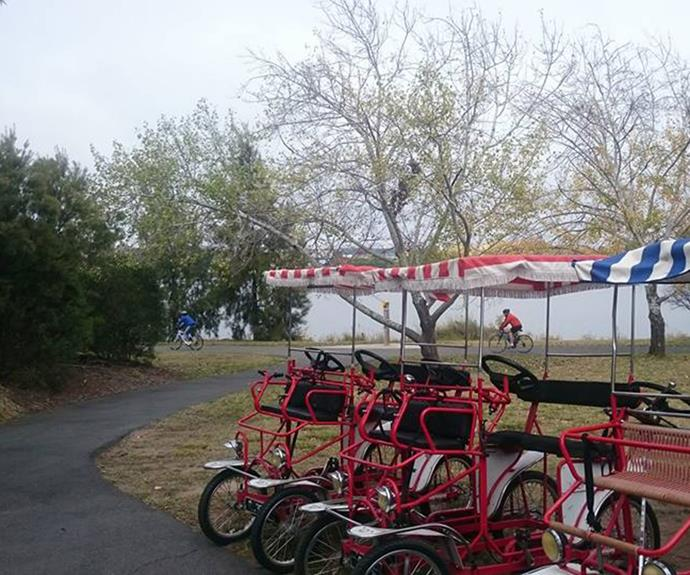 Bike hire at Lake Burley Griffin