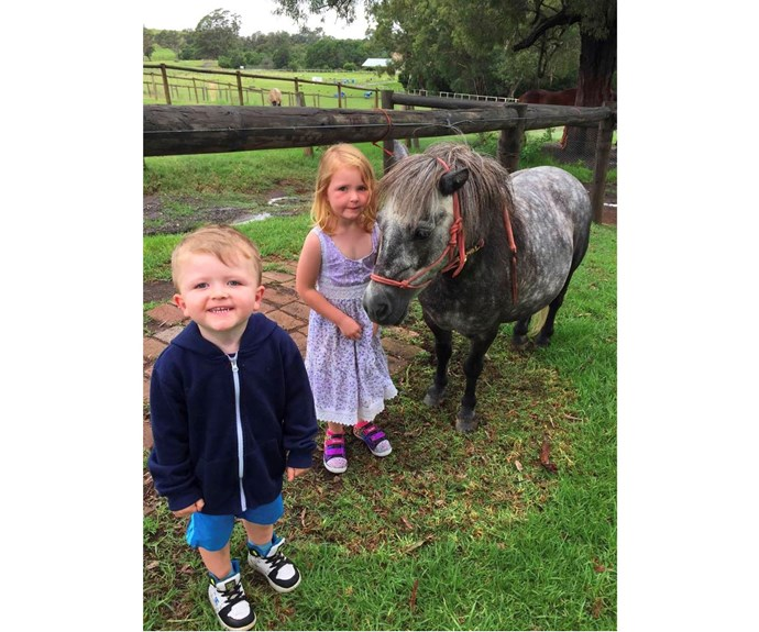 "*Mowbray Park Farm Holidays* Mowbray Park caters for all manners of families with multiple heritage lodges with ensuite family rooms or stand-alone lodges for larger family gatherings and groups. Tariff includes meals and daily supervised activities including pony/horse rides, mountain biking and animal nursery.  [Mowbray Park Farm Holidays](http://www.farmstayholidays.com.au/|target=""_blank""), from $20-$188."