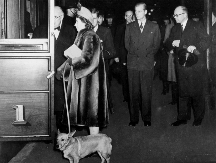 The Queen boards a train with her dogs in 1949.
