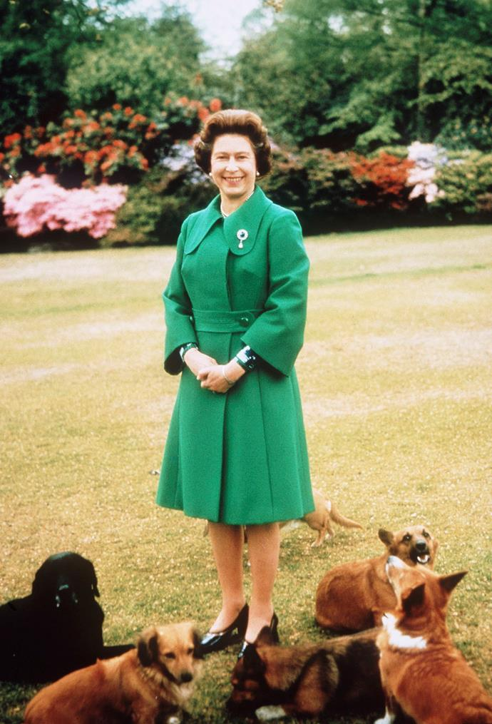 And again! Queen Elizabeth II relaxes in green at Sandringham with her corgis , circa 1970.