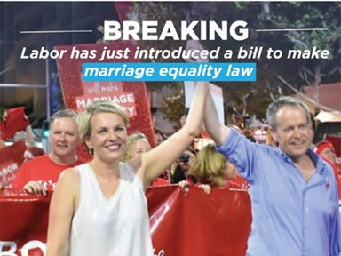 Bill Shorten officially introduces marriage equality bill, slams plebiscite plans in process
