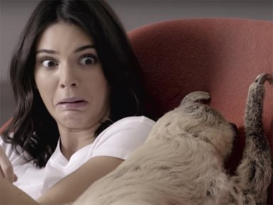 Watch: Kendall Jenner takes a selfie with a sloth, all in the name of fashion