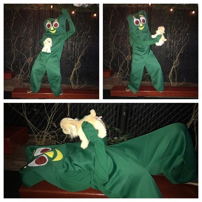 **31. And of course, the guy who dressed up as the guy who dressed up as his dog's favorite toy**