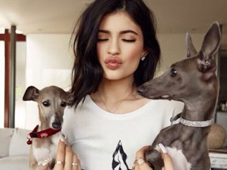 Kylie Jenner puppies