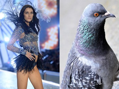 19 things the 2016 Victoria's Secret Fashion Show outfits look like