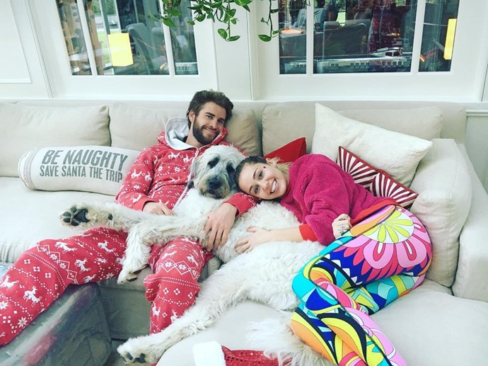 OMG, their first Christmas with their adopted pup Dora!