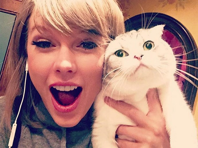 Taylor Swift and cat.