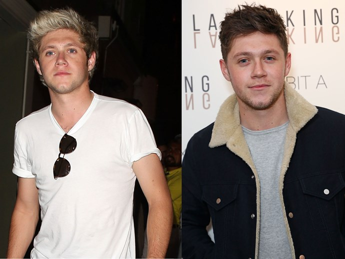 Niall Horan has ditched his iconic blonde 'do for a darker shade, and DUH we're obsessed with it.