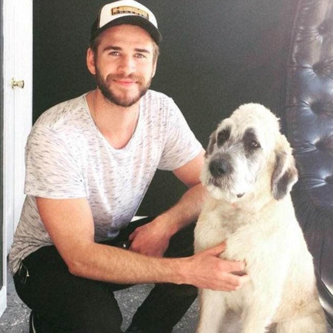 Liam Hemsworth and his beloved Dora <3 <3