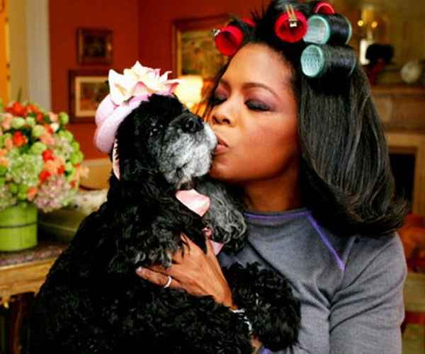 **Oprah Winfrey**<br><br>There's no doubt that Oprah *loves* her dogs. Her dog Sophie, who sadly passed away in 2014, came to work with Oprah every single day. Bless!