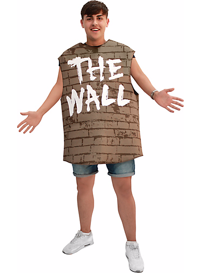 """**""""[Adult Wall Costume](http://www.partycity.com/product/adult+wall+costume.do?kwid=adult%20wall%20costume%20-%20Size%20-%20One%20Size&qcid=&ref=ci&extcmp=pla%7CGoogle&gclid=EAIaIQobChMI24zYsszu1gIVh0CGCh3QcAMWEAQYASABEgJ3JPD_BwE&gclsrc=aw.ds)""""**<br><br> Even though there are claims that this costume alludes to the Pink Floyd album instead of the Donald Trump border proposal, in times like these, it's best to be on the safe side."""