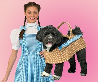 Matching dog and owner costume.