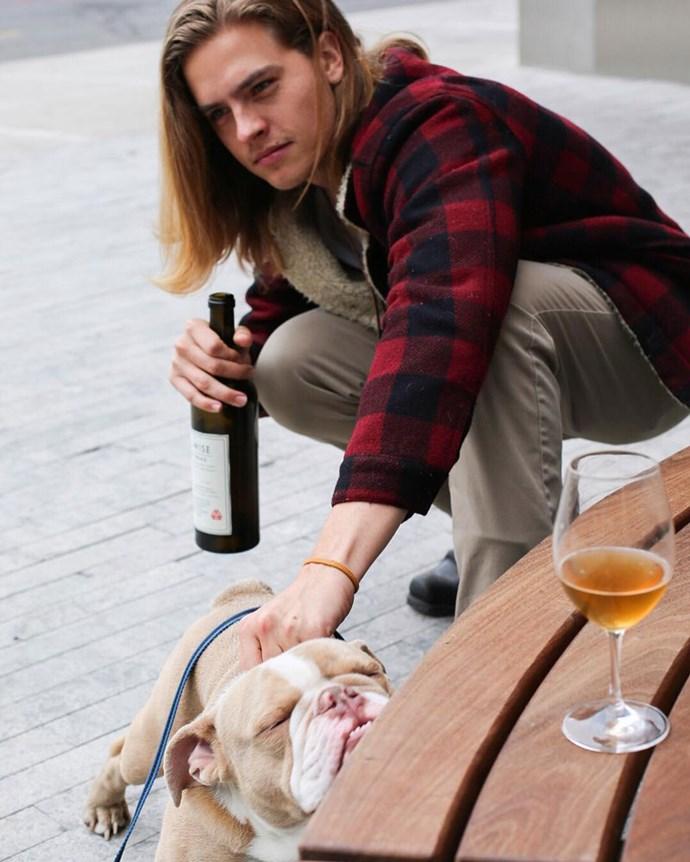 Doggo + wine + boi = HEAVEN.