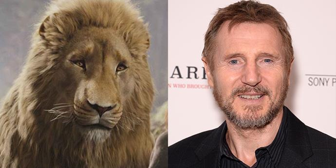 Liam Neeson AKA Aslan