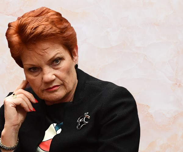 Pauline Hanson is sharing opinions again and this time she's brought Tony Abbott