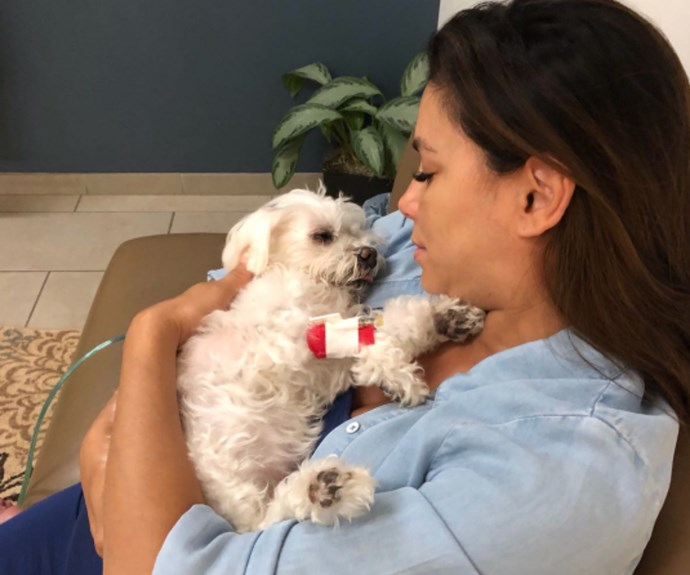 Pregnant Eva Longoria's heartbreaking post about the death of her fur baby